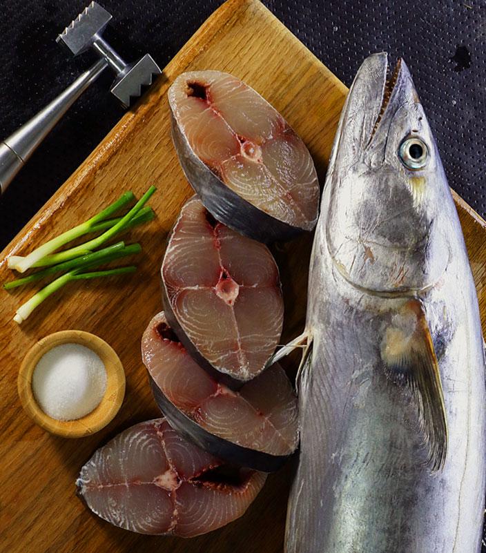 ماهی شیر جنوب خرید ماهی شیر جنوب