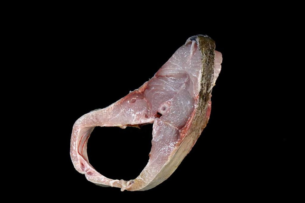 عکس گوشت ماهی مقوا