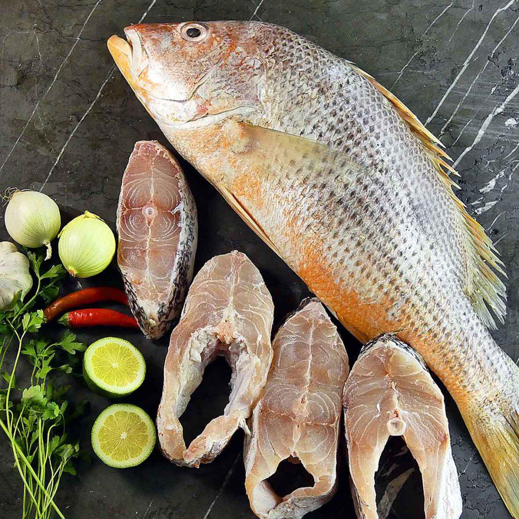 ماهی سرخو تازه اصل