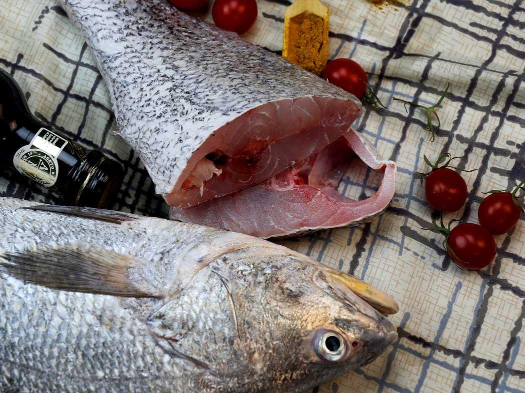 معرفی میش ماهی