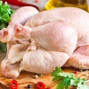 خرید مرغ محلی